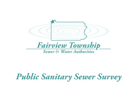 public sewer survey